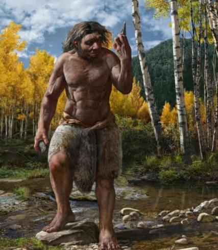 Homo longi